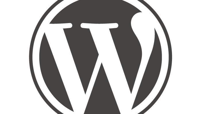 Hook WordPress comprendre add_action(), add_filter() et do_action() | webdevpro.net