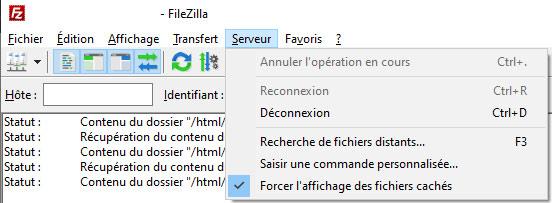 afficher .htaccess dans Filezilla